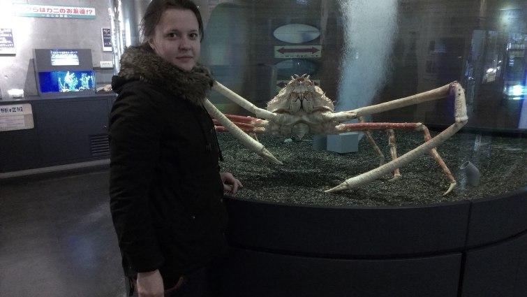Музей краба. Самый большой краб в музее, он живой © фото: Анастасия Жернакова